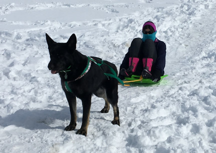 Tabaliah pulling Marna on Snow 2018-02-28