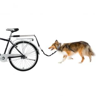 Dog Bicycle Attachment 2017-02-04