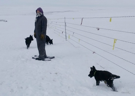 Deron Snowshoeing with GSD 2016-12-27