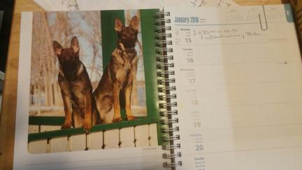 GSD Calendar the Week of Tikuah 2018.01.16
