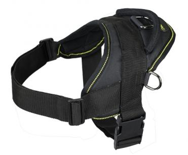 Dog Harness for Tracking